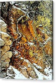 Autumn High.. Acrylic Print by Al  Swasey