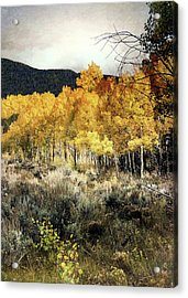 Autumn Hike Acrylic Print by Jim Hill