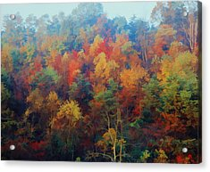 Acrylic Print featuring the photograph Autumn Hill Aglow by Diane Alexander