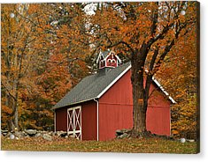 Autumn In Aspetuck Acrylic Print
