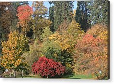 Autumn In Baden Baden Acrylic Print by Travel Pics