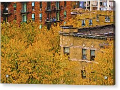 Autumn In Chicago Acrylic Print