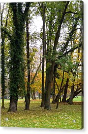 Autumn In City Park Nature Photography Acrylic Print by S Art