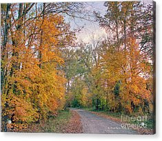 Acrylic Print featuring the photograph Autumn In East Texas by Charles McKelroy