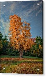 Autumn In Maine Acrylic Print