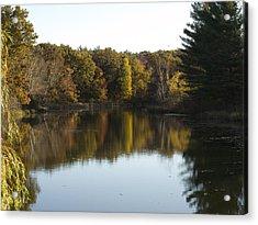 Acrylic Print featuring the photograph Autumn In Mears Michigan by Tara Lynn