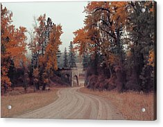 Autumn In Montana Acrylic Print by Cathy Anderson