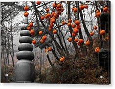Autumn In Mountains Acrylic Print by Peteris Vaivars