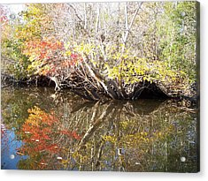 Autumn In Moyock Acrylic Print