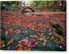 Autumn In New England Acrylic Print by Rick Berk