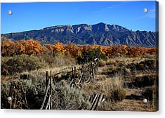 Autumn In New Mexico Acrylic Print by Anthony Sekellick