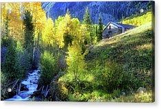 Autumn In Ophir - Colorado - Aspens Acrylic Print by Jason Politte