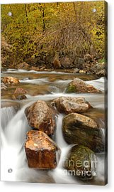 Autumn In Provo Canyon Acrylic Print by Dennis Hammer