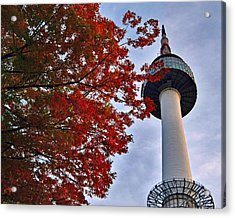 Autumn In Seoul Acrylic Print