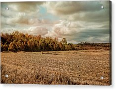 Autumn In The Country Landscape Scene Acrylic Print by Jai Johnson