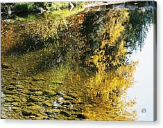 Autumn In The Water Acrylic Print