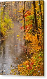 Autumn In Trumbull Acrylic Print by Karol Livote