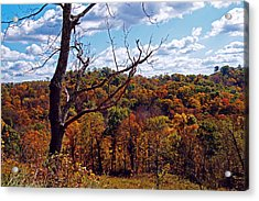 Acrylic Print featuring the photograph Autumn In West Virginia by Mike Murdock
