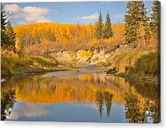 Autumn In Whitemud Ravine Acrylic Print by Jim Sauchyn