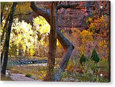 Autumn In Zion Acrylic Print