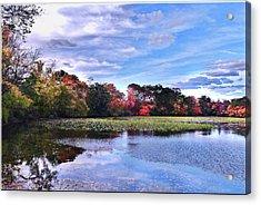 Autumn Landscape 3 Acrylic Print