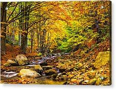 Autumn Landscape Acrylic Print by Evgeni Dinev