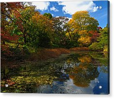 Autumn Landscape Acrylic Print by Juergen Roth