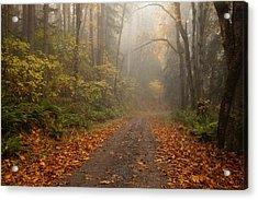 Autumn Lane Acrylic Print by Mike  Dawson