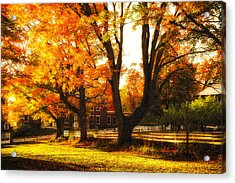 Acrylic Print featuring the photograph Autumn Lane by Robert Clifford