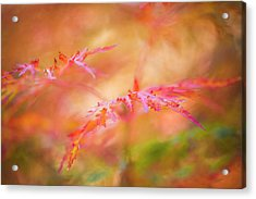 Autumn Leaf Abstract Acrylic Print