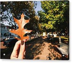 Autumn Leaf Acrylic Print