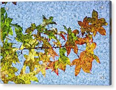 Acrylic Print featuring the photograph Autumn Leaves 2 by Jean Bernard Roussilhe