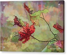 Acrylic Print featuring the photograph Autumn Leaves - Abstract Art by Kerri Farley
