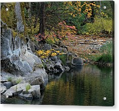 Autumn Leaves And Merced River, Mariposa County, California Acrylic Print by Troy Montemayor