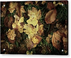 Autumn Leaves Are Falling Down... Acrylic Print by Vittorio Chiampan
