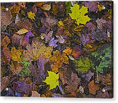 Autumn Leaves At Side Of Road Acrylic Print by John Hansen