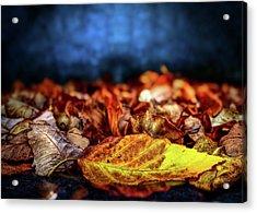 Autumn Leaves Acrylic Print by Bob Orsillo
