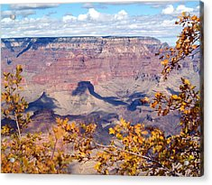 Autumn Leaves Acrylic Print by Carrie Putz