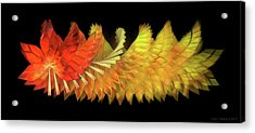 Autumn Leaves - Composition 2.2 Acrylic Print