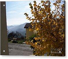 Autumn Leaves Acrylic Print by Judy Kirouac