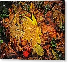 Autumn Leaves Of Beaver Creek Acrylic Print by Thom Zehrfeld