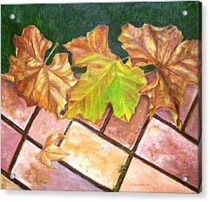 Autumn Leaves Acrylic Print by Olga Kaczmar