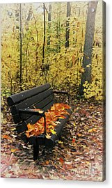 Acrylic Print featuring the painting Autumn Leaves On A Bench Ap by Dan Carmichael