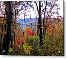 Autumn Leaves On Blue Ridge Parkway Acrylic Print