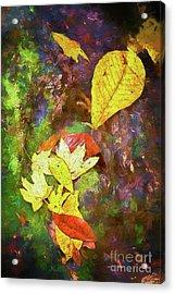 Autumn Leaves On Mossy Tree Trunk Ap Acrylic Print by Dan Carmichael
