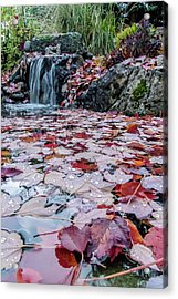 Autumn Leaves On The Pond Acrylic Print by Mick Anderson