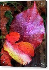 Autumn Leaves Acrylic Print