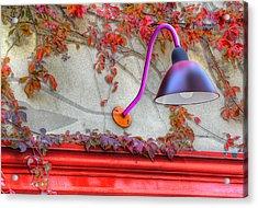Autumn Light Acrylic Print by Paul Wear