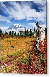 Autumn Majesty Acrylic Print by Mike  Dawson