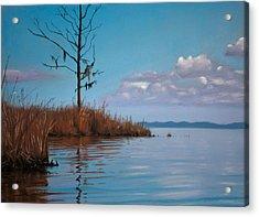 Autumn Marsh Reeds Acrylic Print
